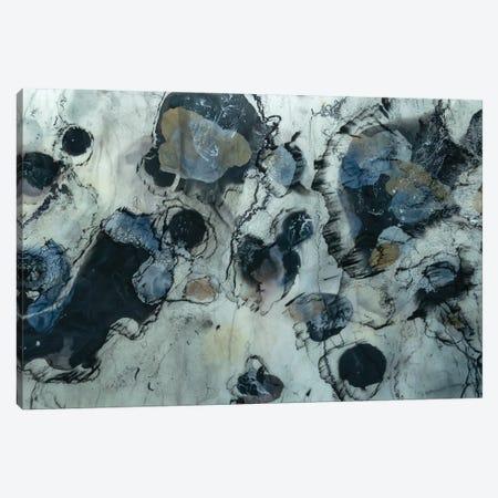 Glacier Canvas Print #TWM16} by Christina Twomey Canvas Wall Art