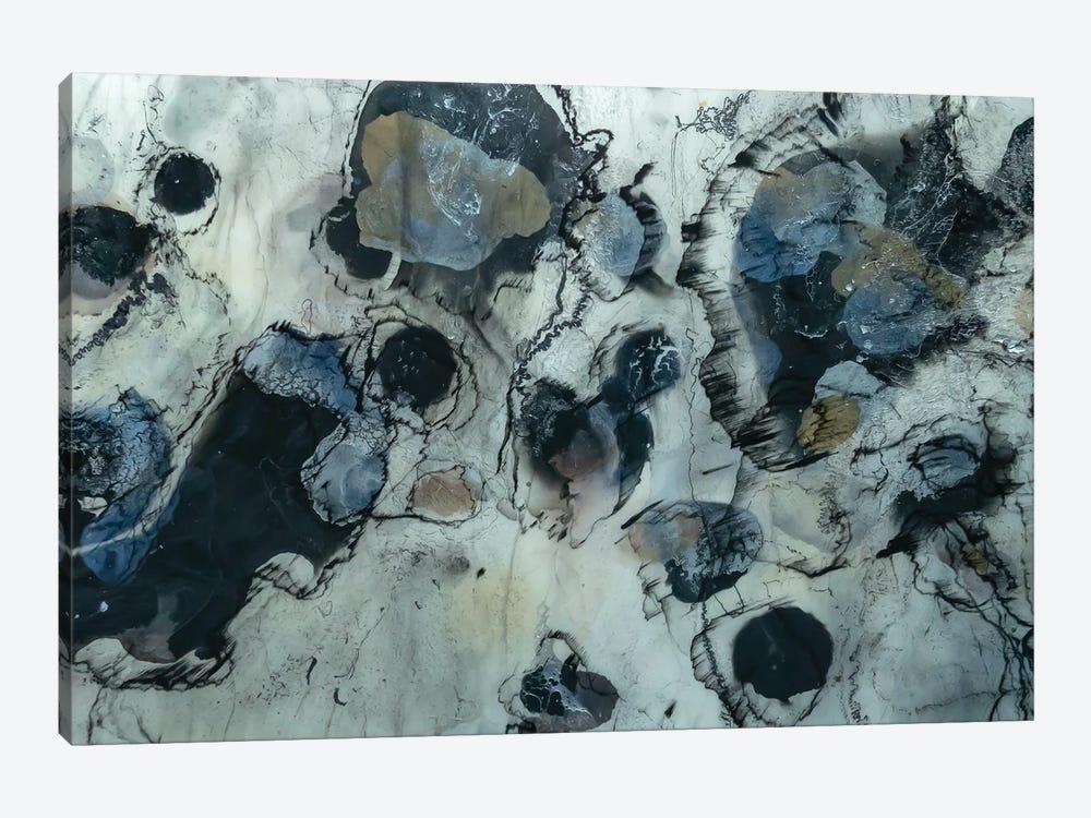Glacier by Christina Twomey 1-piece Canvas Art