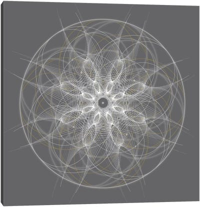 Positive Energy II Canvas Art Print