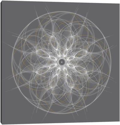 Positive Energy II Canvas Print #TYL5