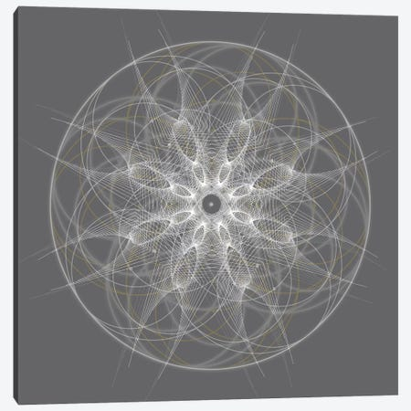 Positive Energy II Canvas Print #TYL5} by Tyler Anderson Canvas Print