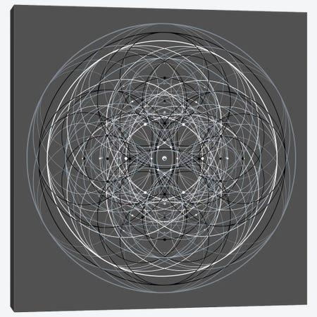 Positive Energy III Canvas Print #TYL6} by Tyler Anderson Art Print