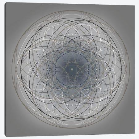 Positive Energy IV Canvas Print #TYL7} by Tyler Anderson Art Print