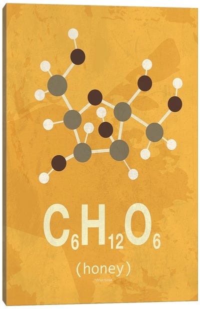 Honey Canvas Art Print