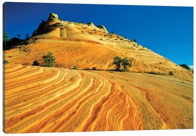 Layered Sandstone, Zion National Park, Utah, USA Canvas Art Print