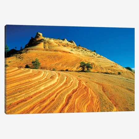 Layered Sandstone, Zion National Park, Utah, USA Canvas Print #UCK21} by Chuck Haney Canvas Art