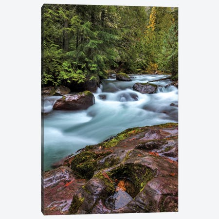 Avalanche Creek in Glacier National Park, Montana, USA Canvas Print #UCK24} by Chuck Haney Art Print