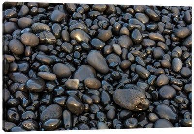 Black pebbles on the beach, Snaefellsnes Peninsula, Iceland Canvas Art Print