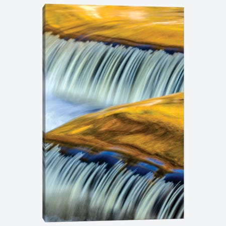 Golden Middle Branch of the Ontonagon River, Bond Falls Scenic Site, Michigan USA I Canvas Print #UCK36} by Chuck Haney Canvas Art