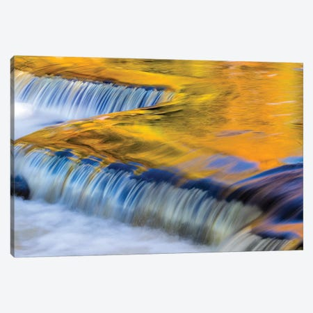 Golden Middle Branch of the Ontonagon River, Bond Falls Scenic Site, Michigan USA II Canvas Print #UCK37} by Chuck Haney Canvas Art