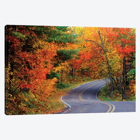 Autumn Landscape, Park Drive, Itasca State Park, Minnesota, USA Canvas Print #UCK3} by Chuck Haney Canvas Art