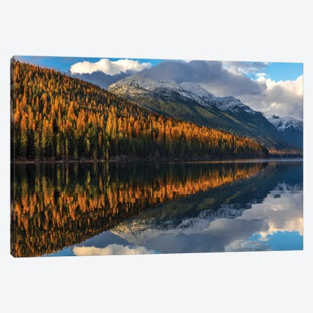 Mountain peaks reflect into Bowman Lake in autumn, Glacier National Park, Montana, USA I Canvas Print #UCK44} by Chuck Haney Art Print