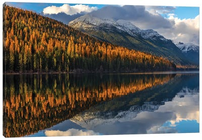 Mountain peaks reflect into Bowman Lake in autumn, Glacier National Park, Montana, USA I Canvas Art Print