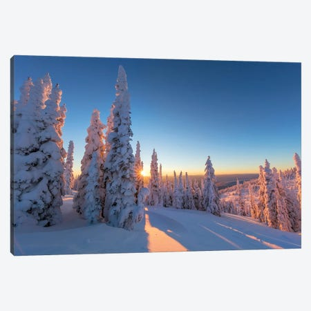 Setting sun through forest of snow ghosts at Whitefish, Montana, USA Canvas Print #UCK48} by Chuck Haney Canvas Artwork