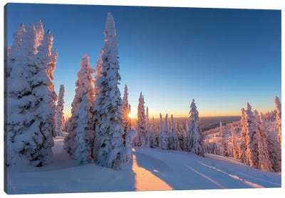 Setting sun through forest of snow ghosts at Whitefish, Montana, USA Canvas Art Print
