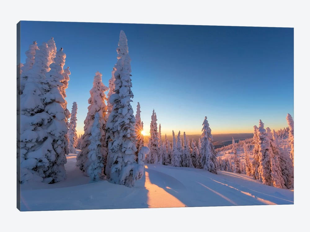 Setting sun through forest of snow ghosts at Whitefish, Montana, USA by Chuck Haney 1-piece Canvas Artwork