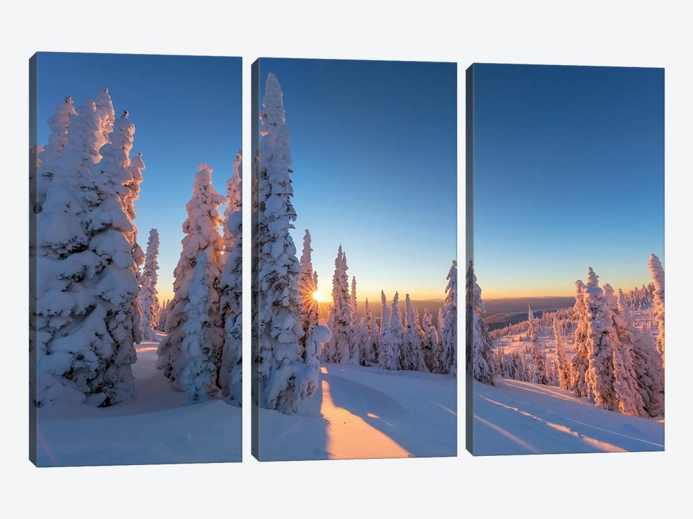 Setting sun through forest of snow ghosts at Whitefish, Montana, USA by Chuck Haney 3-piece Canvas Art