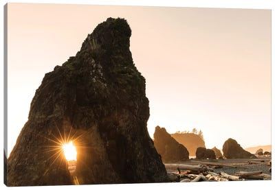 Sunset along sea stacks on Ruby Beach in Olympic National Park, Washington State, USA Canvas Art Print