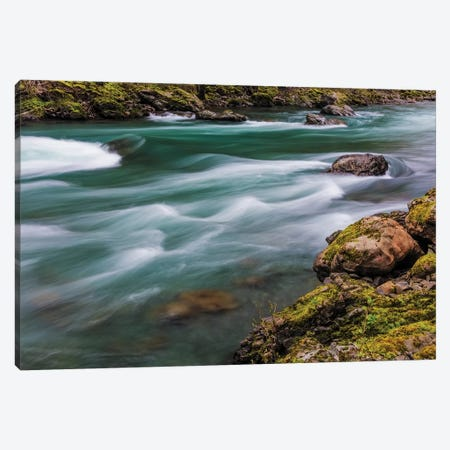 The Elwha River in Olympic National Park, Washington State, USA Canvas Print #UCK52} by Chuck Haney Canvas Art Print