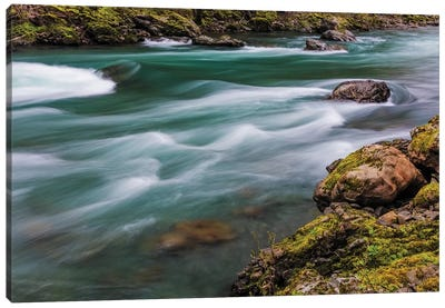 The Elwha River in Olympic National Park, Washington State, USA Canvas Art Print