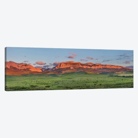 Beef cattle graze below Walling Reef on the Rocky Mountain Front at sunrise near Dupuyer, Montana Canvas Print #UCK59} by Chuck Haney Canvas Art Print