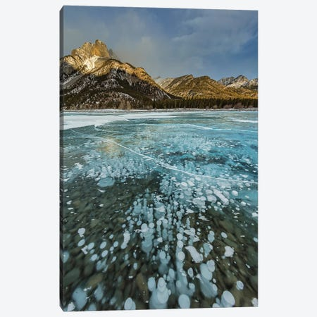 Mount Abraham at sunrise with methane ice bubbles under clear ice on Abraham Lake Canvas Print #UCK69} by Chuck Haney Canvas Art