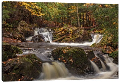 Rapids and autumn leaves along the Little Carp River in Porcupine Mountains Wilderness State Park Canvas Art Print