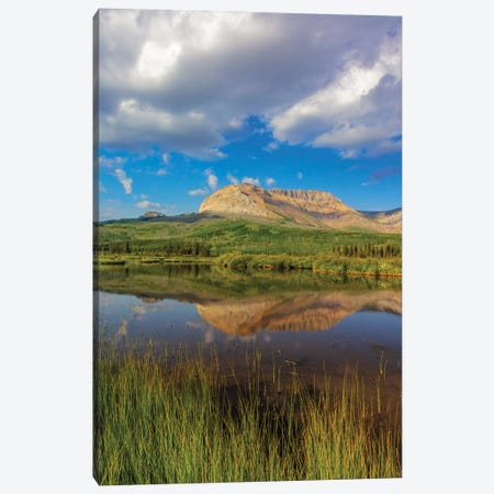 Sofa Mountain reflects into beaver pond in Waterton Lakes National Park, Alberta, Canada Canvas Print #UCK76} by Chuck Haney Canvas Artwork