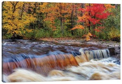 Sturgeon River in autumn near Alberta in the Upper Peninsula of Michigan, USA Canvas Art Print