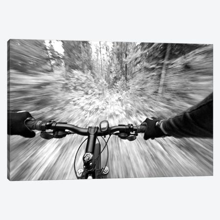 First Person Blurred Motion Mountain Biking View, West Glacier, Montana, USA 3-Piece Canvas #UCK7} by Chuck Haney Canvas Art Print