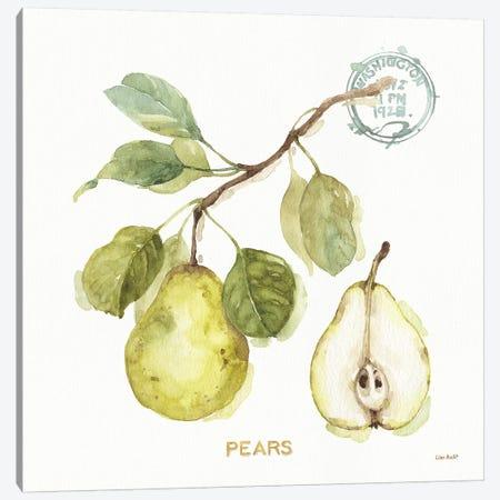 My Greenhouse Fruit I Canvas Print #UDI124} by Lisa Audit Canvas Art Print