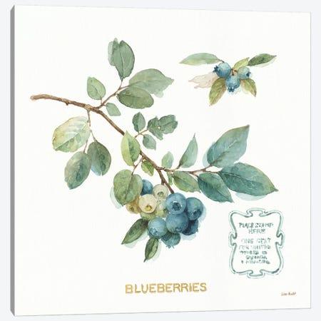 My Greenhouse Fruit II Canvas Print #UDI125} by Lisa Audit Canvas Print