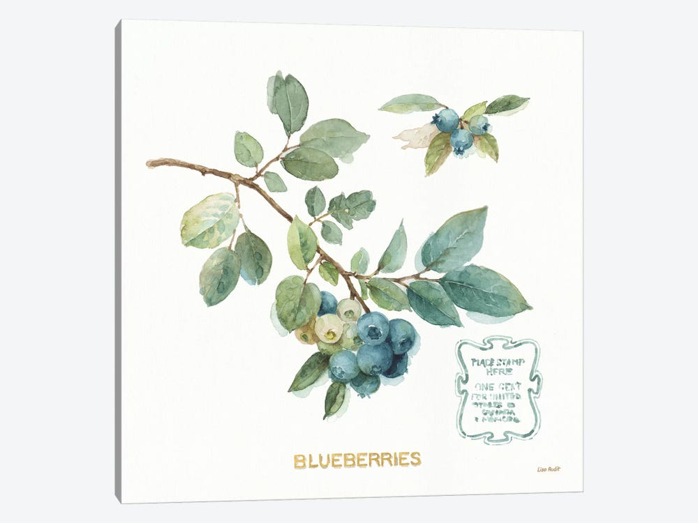 My Greenhouse Fruit II by Lisa Audit 1-piece Canvas Art Print