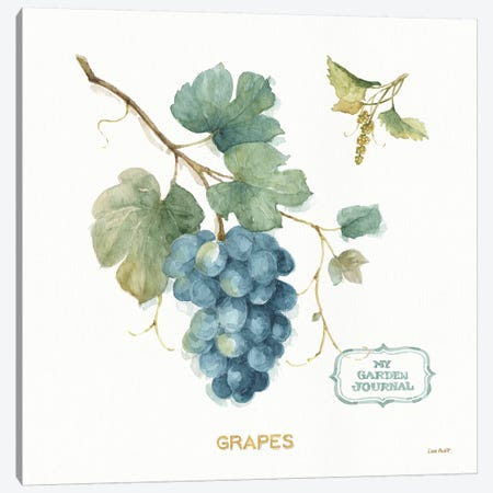 My Greenhouse Fruit III Canvas Print #UDI126} by Lisa Audit Canvas Art Print