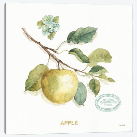 My Greenhouse Fruit IV Canvas Print #UDI127} by Lisa Audit Canvas Art Print