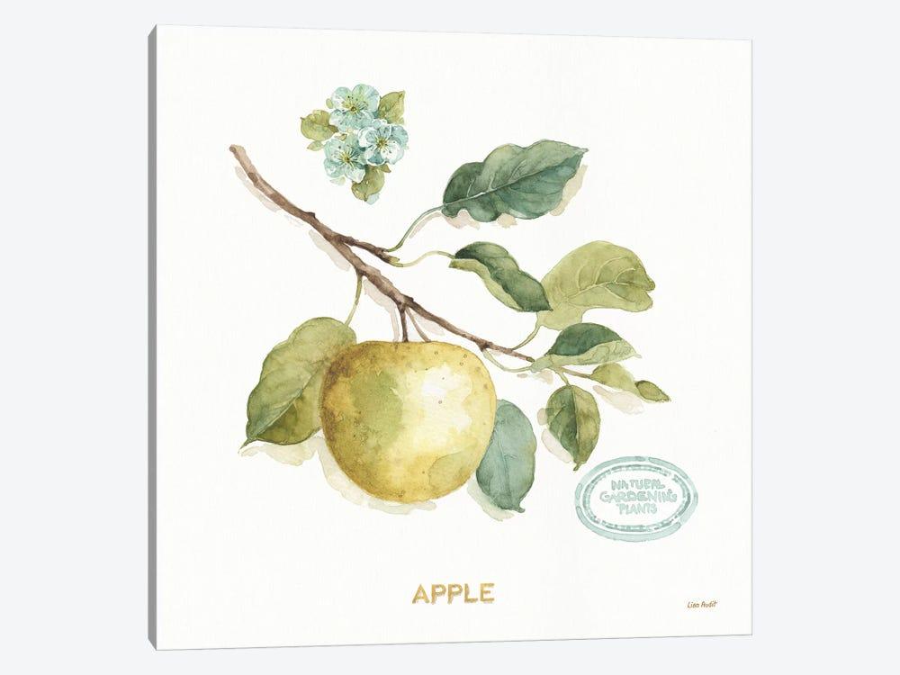 My Greenhouse Fruit IV by Lisa Audit 1-piece Canvas Art Print