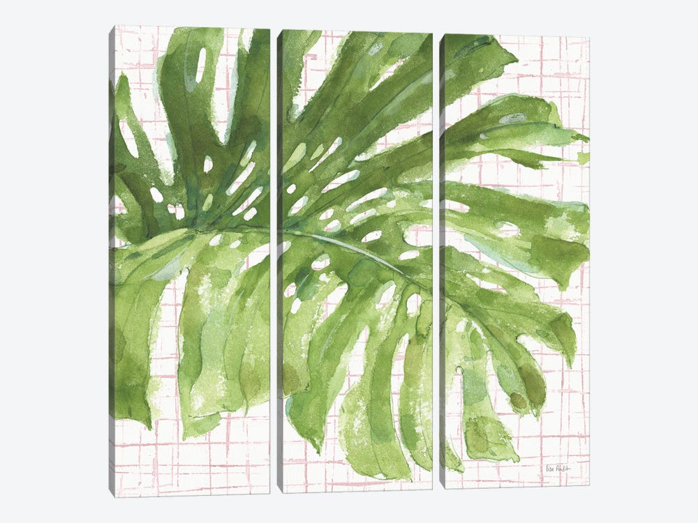 Mixed Greens LXXIV on Pink by Lisa Audit 3-piece Canvas Artwork
