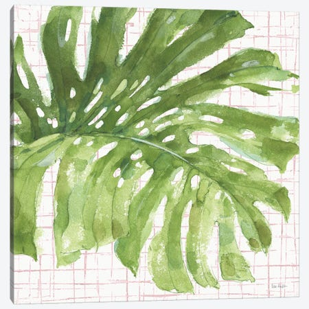 Mixed Greens LXXIV on Pink Canvas Print #UDI140} by Lisa Audit Canvas Art