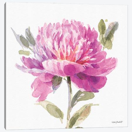 Obviously Pink VA Canvas Print #UDI249} by Lisa Audit Canvas Art Print
