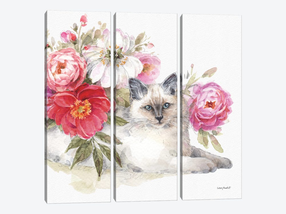 Obviously Pink XXIB by Lisa Audit 3-piece Canvas Wall Art