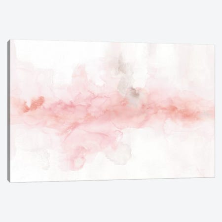 Rainbow Seeds Abstract Blush Gray Crop Canvas Print #UDI27} by Lisa Audit Canvas Wall Art