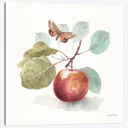 AInIIA Autumn In Nature Canvas Print #UDI304} by Lisa Audit Canvas Print