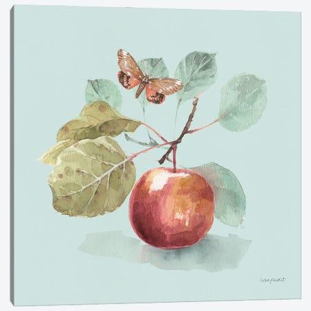 Autumn In Nature II On Aqua Canvas Print #UDI305} by Lisa Audit Canvas Print
