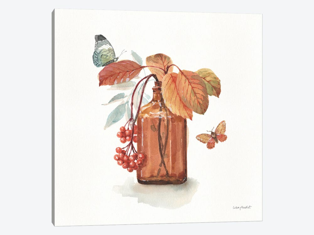 Autumn In Nature III On White by Lisa Audit 1-piece Canvas Art Print