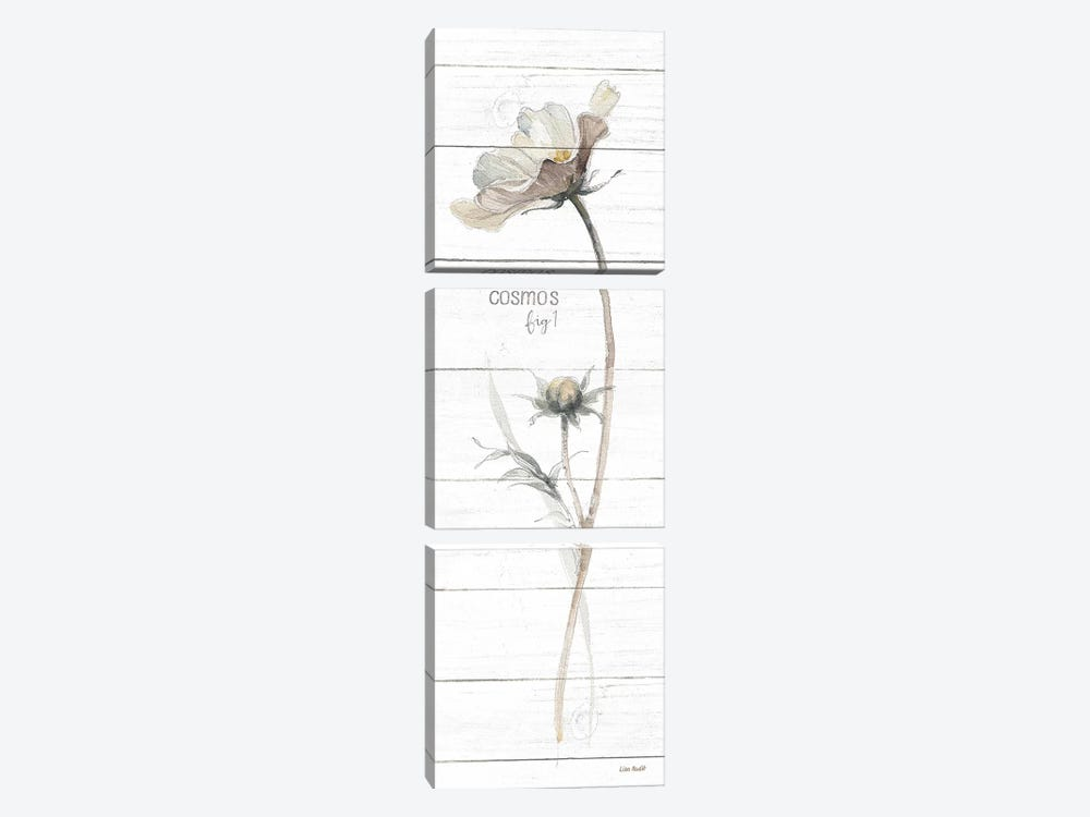 A Country Weekend VII Shiplap Crop by Lisa Audit 3-piece Canvas Artwork