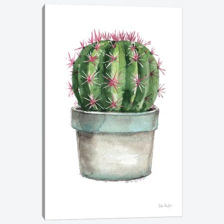 Mixed Greens Succulent II Canvas Print #UDI33} by Lisa Audit Canvas Art