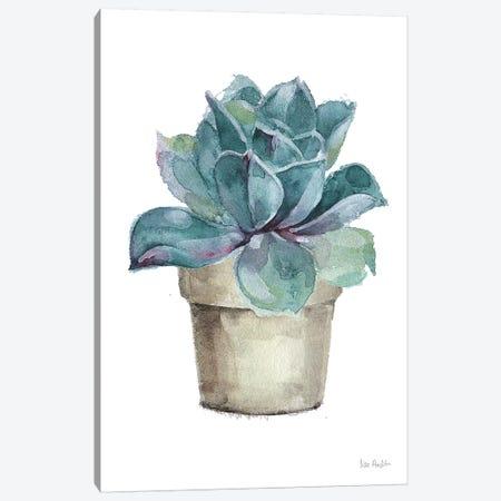 Mixed Greens Succulent IV Canvas Print #UDI35} by Lisa Audit Art Print