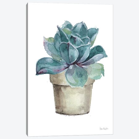 Mixed Greens Succulent IV Canvas Print #UDI35} by Lisa Audit Art Print