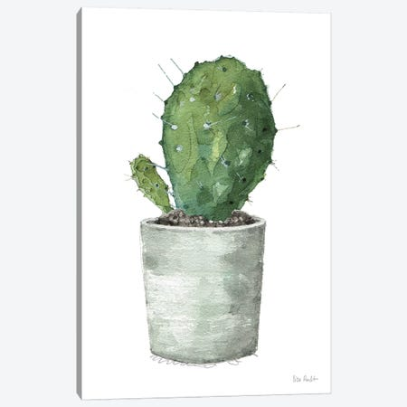 Mixed Greens Succulent VI Canvas Print #UDI37} by Lisa Audit Art Print
