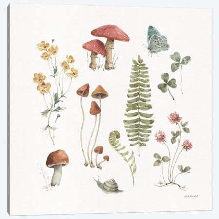 Forest Treasures III Canvas Print #UDI416} by Lisa Audit Art Print